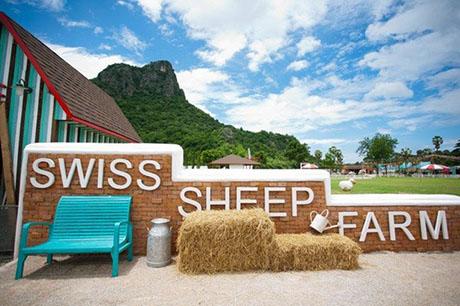 泰國華欣瑞士綿羊牧場門票,華欣綿羊牧場門票,泰國華欣綿羊農場門票