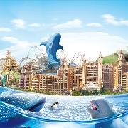 珠海長隆橫琴灣酒店2天1晚雙人套票(酒店+兩日無限海洋王國+《龍秀》表演+自助午餐)