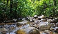 泰國拷索國家公園2天1夜叢林TOUR大冒險(二)