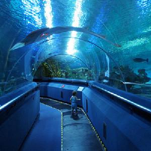 吉隆坡Aquarium KLCC水族館門票(電子票)