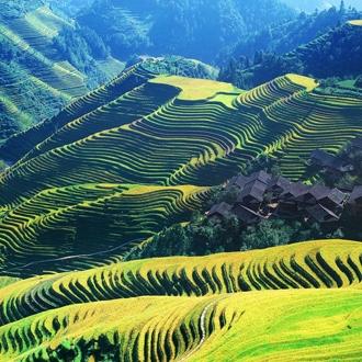 桂林龍脊古壯寨梯田、民族歡迎晚會、桃花節、駱駝峰動車3天遊