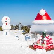 韓國洪川大明Snowy Land冰雪王國+往返巴士套票