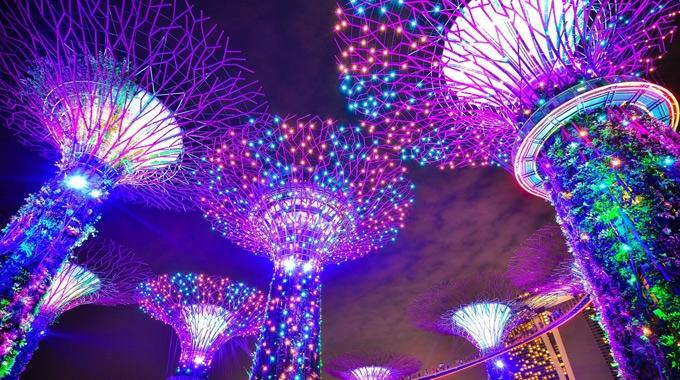 2019新加坡濱海灣花園雙館門票(掃碼入園)