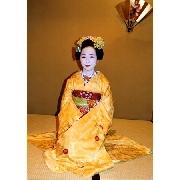 京都舞妓歌舞晚宴半日遊(含部分酒店接送 周一三五出團)