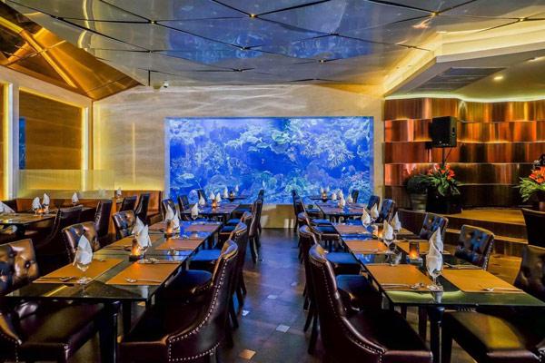 曼谷水族館餐廳 曼谷水族館自助餐 曼谷可觀看餵食秀的自助餐 曼谷自助餐推介2019 曼谷熱門自助餐推薦2020