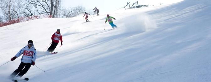 芝山森林滑雪度假村