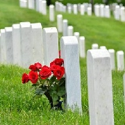 阿靈頓國家公墓和戰爭紀念碑遊
