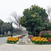 """無錫市""""愛在蠡湖""""2014大地花海(無錫)香水百合節"""