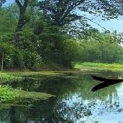 杭州市西溪濕地(西區)