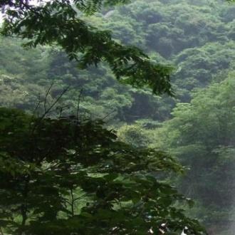 天台山龍穿峽