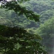 台州市天台山龍穿峽