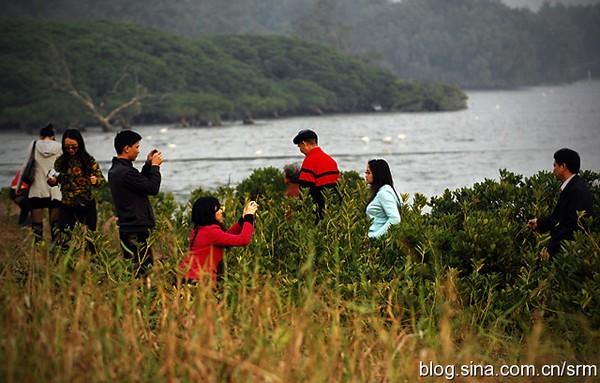 深圳旅遊攻略圖片